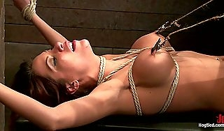 Aleksa Nicole on every side Aleska Nicole Fucked Heartlessly  HogTied